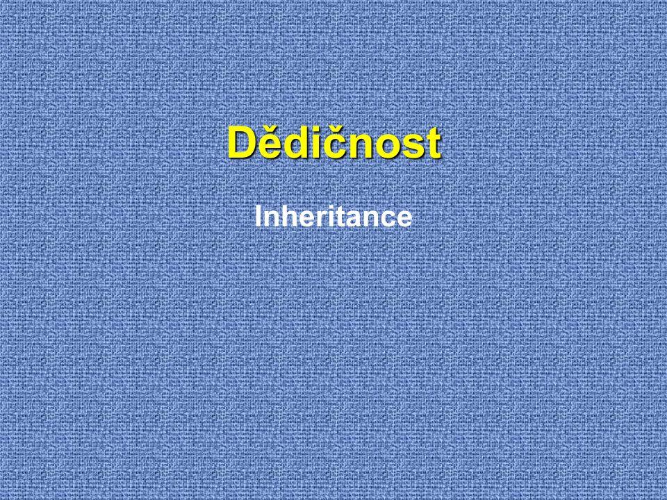 Dědičnost Inheritance