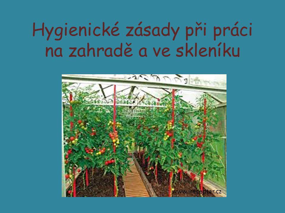 Základní hygienická pravidla při práci na zahradě a ve skleníku Musí být zajištěna hygiena pracovního prostředí v učebnách i na školním pozemku.