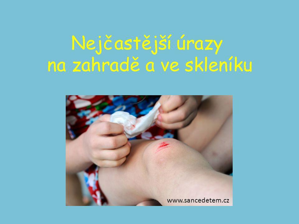 Nejčastější úrazy na zahradě a ve skleníku www.sancedetem.cz