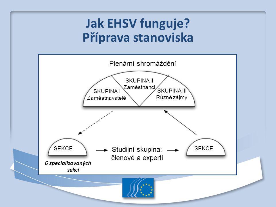Jak EHSV funguje? Příprava stanoviska 6 specializovaných sekcí Plenární shromáždění SKUPINA II Zaměstnanci SKUPINA III Různé zájmy SEKCE Studijní skup
