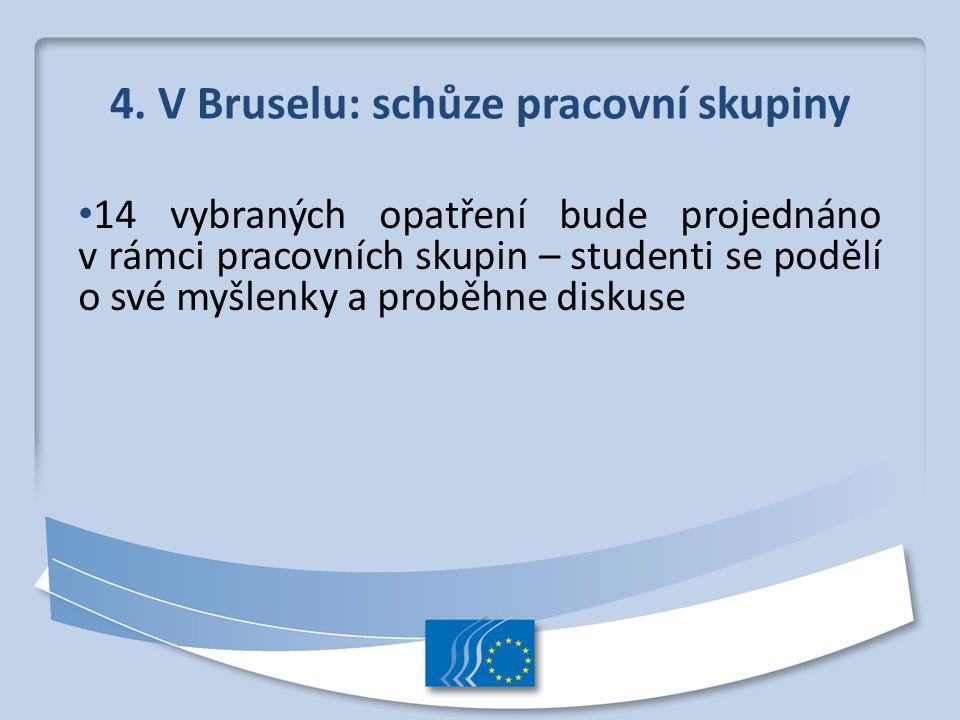 4. V Bruselu: schůze pracovní skupiny 14 vybraných opatření bude projednáno v rámci pracovních skupin – studenti se podělí o své myšlenky a proběhne d