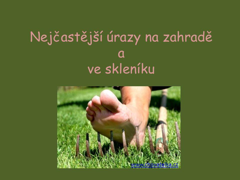 Nejčastější úrazy na zahradě a ve skleníku www.chovatelka.cz