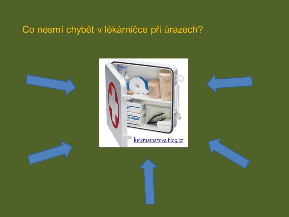 l ucymaroszova.blog.cz Co nesmí chybět v lékárničce při úrazech?