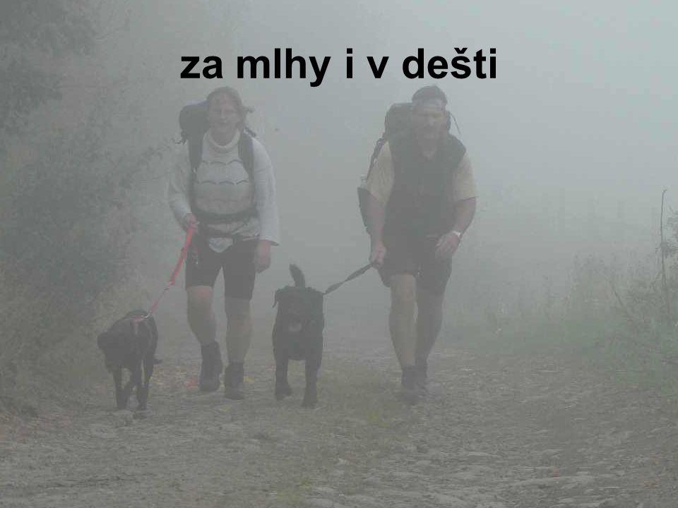 za mlhy i v dešti