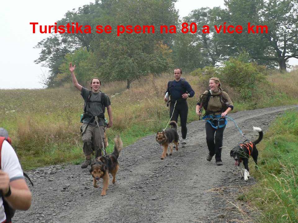 Turistika se psem na 80 a více km