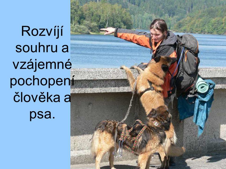 Rozvíjí souhru a vzájemné pochopení člověka a psa.