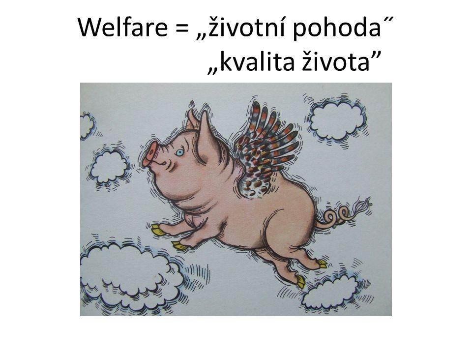 """Welfare = """"životní pohoda˝ """"kvalita života"""