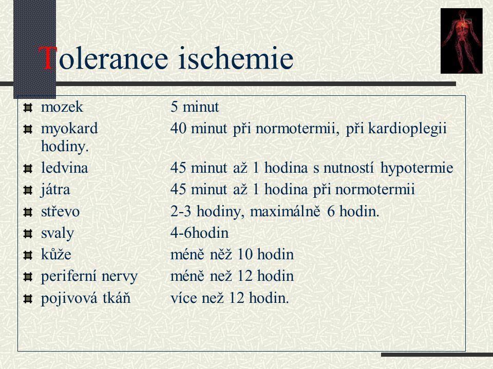 Tolerance ischemie mozek 5 minut myokard40 minut při normotermii, při kardioplegii hodiny. ledvina 45 minut až 1 hodina s nutností hypotermie játra45