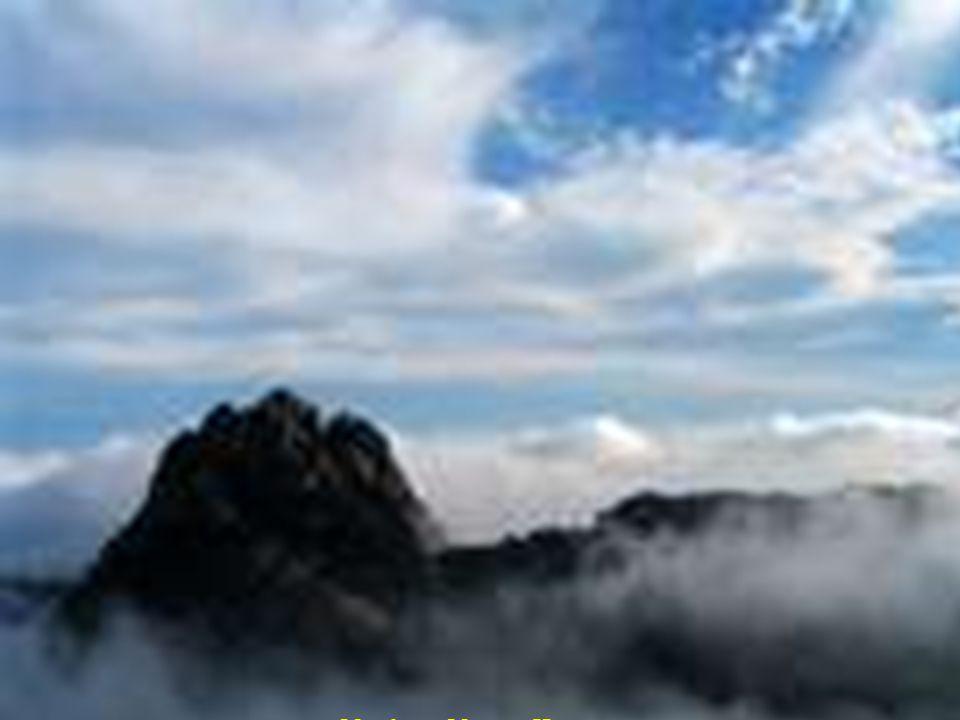 Huangshan borovice Shody do nebe