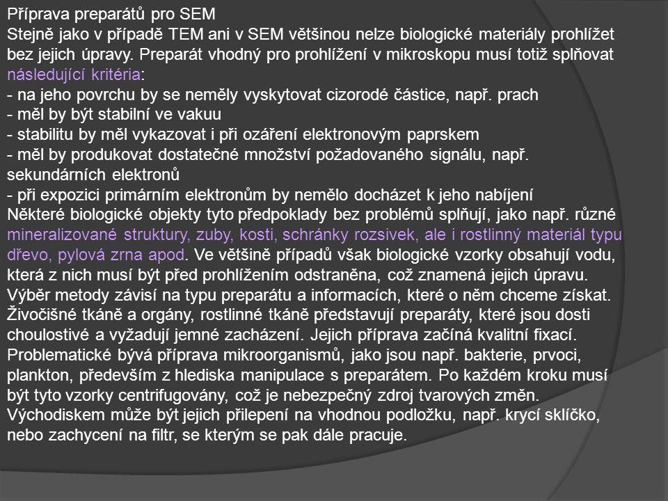 Příprava preparátů pro SEM Stejně jako v případě TEM ani v SEM většinou nelze biologické materiály prohlížet bez jejich úpravy. Preparát vhodný pro pr