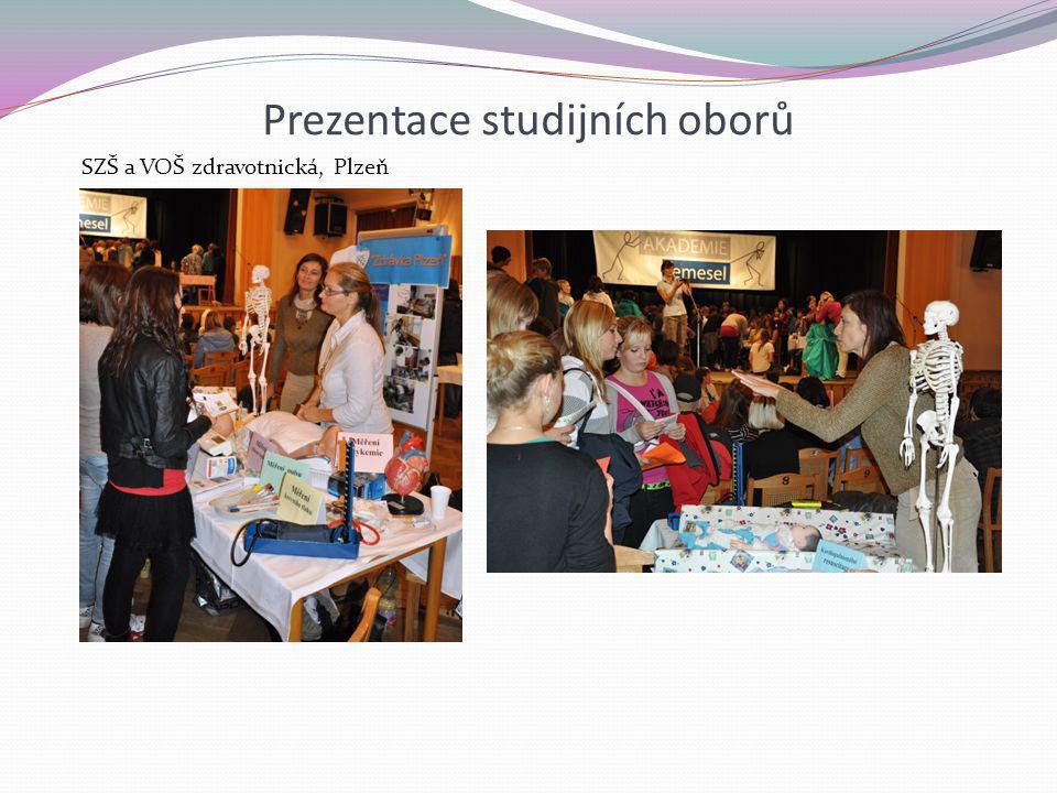 Prezentace studijních oborů SZŠ a VOŠ zdravotnická, Plzeň