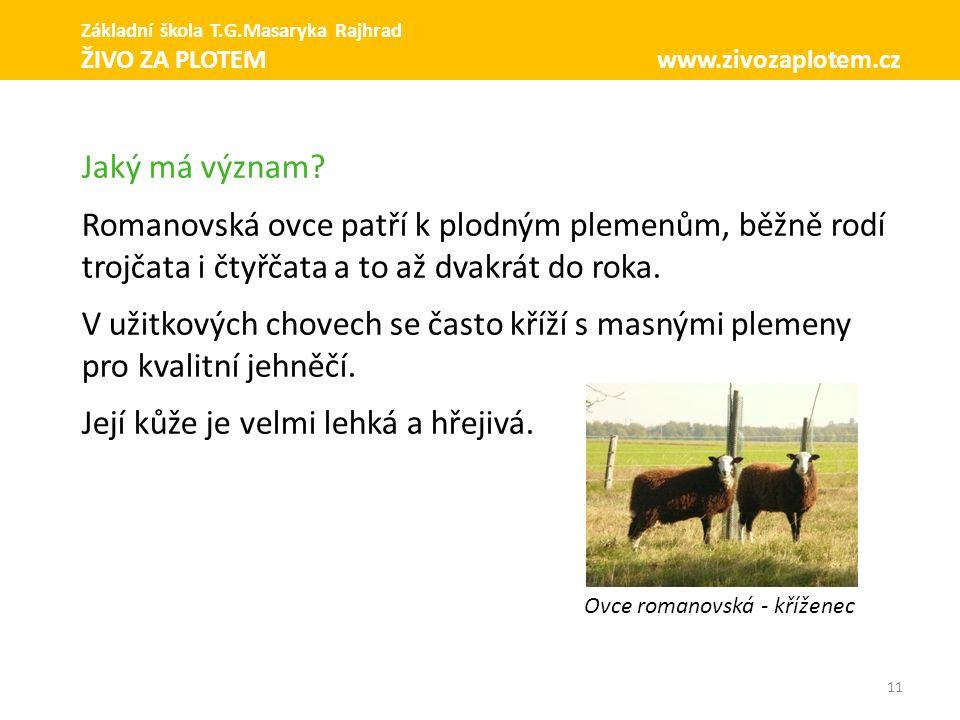 11 Jaký má význam? Romanovská ovce patří k plodným plemenům, běžně rodí trojčata i čtyřčata a to až dvakrát do roka. V užitkových chovech se často kří