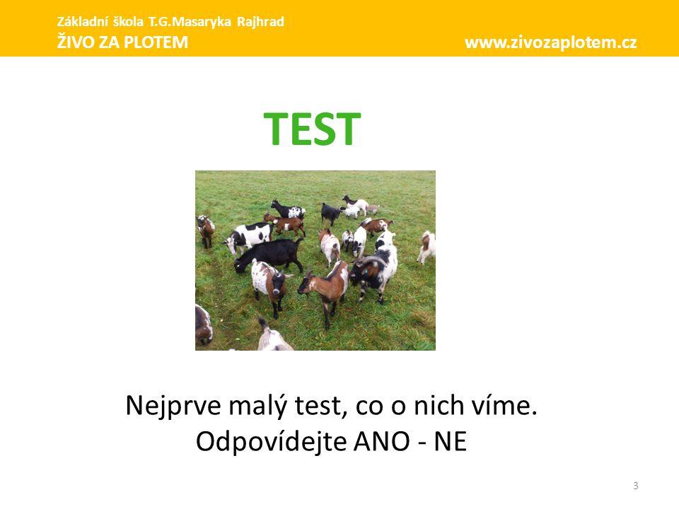 3 Nejprve malý test, co o nich víme. Odpovídejte ANO - NE TEST Základní škola T.G.Masaryka Rajhrad ŽIVO ZA PLOTEM www.zivozaplotem.cz