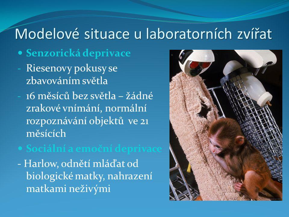 Modelové situace u laboratorních zvířat Motorické omezení a zvýšený sociální tlak - neadekvátně malý prostor - často v psychosomatickém výzkumu - zvýšený krevní tlak - vznik maligních nádorů Aplikace psychofarmak - tatáž látka může mít rozdílné účinky i u relativně blízkých druhů - podávání olova myším – snížená frekvence soc.