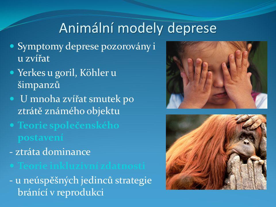 Animální modely deprese Symptomy deprese pozorovány i u zvířat Yerkes u goril, Köhler u šimpanzů U mnoha zvířat smutek po ztrátě známého objektu Teori