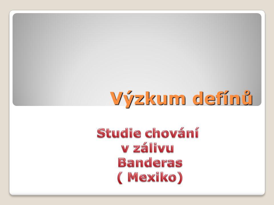 Výzkum defínů