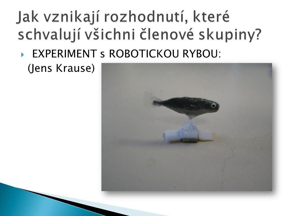  EXPERIMENT s ROBOTICKOU RYBOU: (Jens Krause)