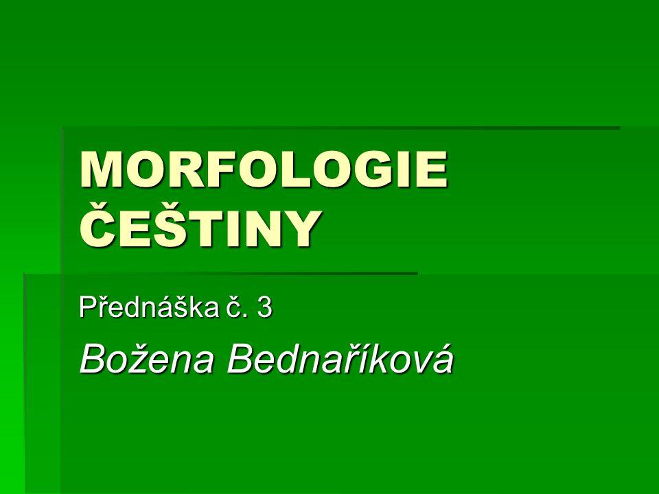 MORFOLOGIE ČEŠTINY Přednáška č. 3 Božena Bednaříková