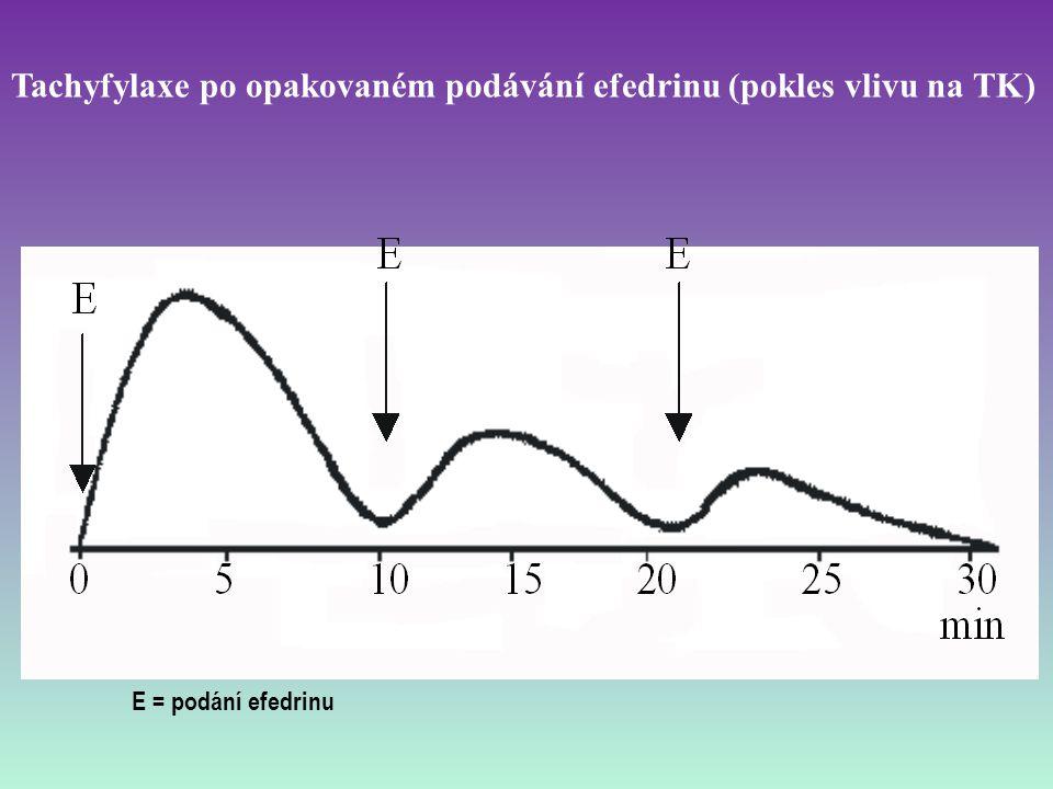 Tachyfylaxe po opakovaném podávání efedrinu (pokles vlivu na TK) E = podání efedrinu