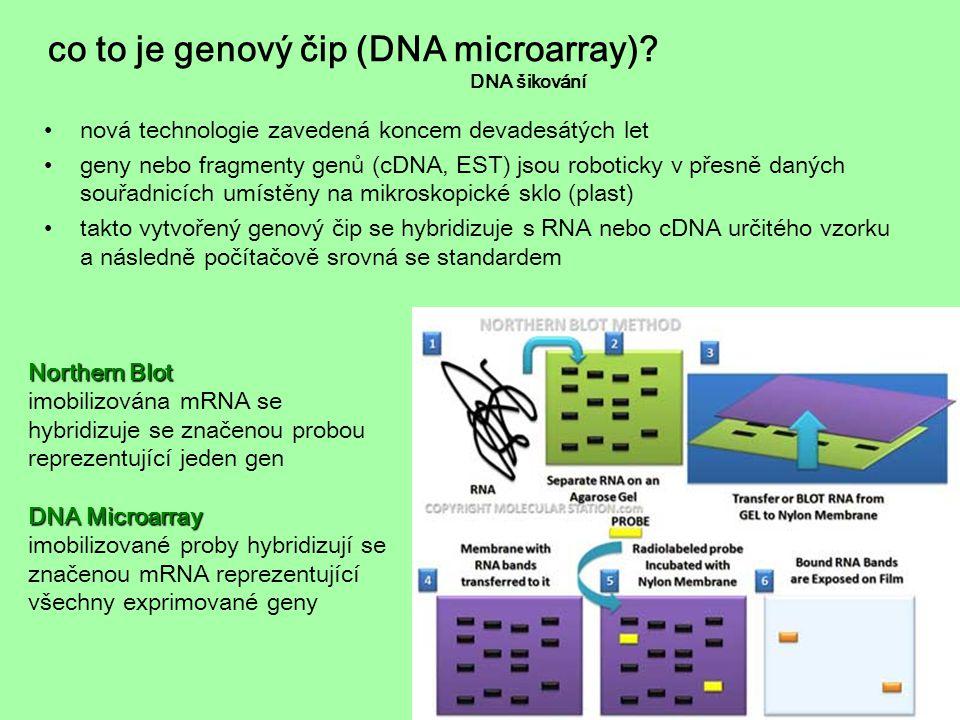 co to je genový čip (DNA microarray)? DNA šikování nová technologie zavedená koncem devadesátých let geny nebo fragmenty genů (cDNA, EST) jsou robotic