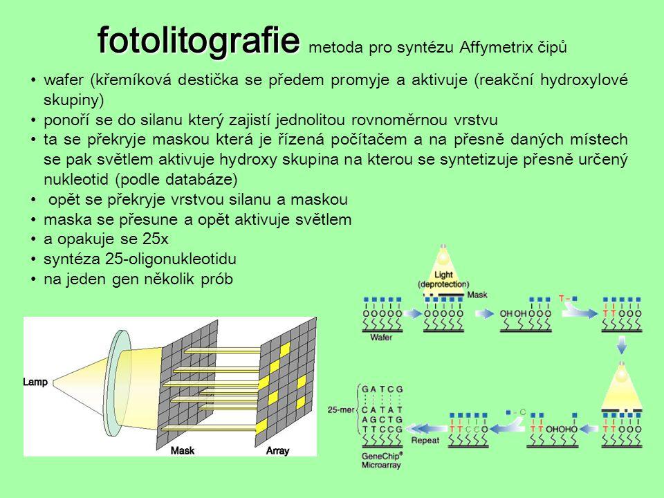fotolitografie fotolitografie metoda pro syntézu Affymetrix čipů wafer (křemíková destička se předem promyje a aktivuje (reakční hydroxylové skupiny)