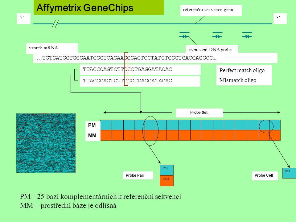 PM - 25 bazí komplementárních k referenční sekvenci MM – prostřední báze je odlišná Affymetrix GeneChips vymezení DNA próby pairs vzorek mRNA 5'3' ref