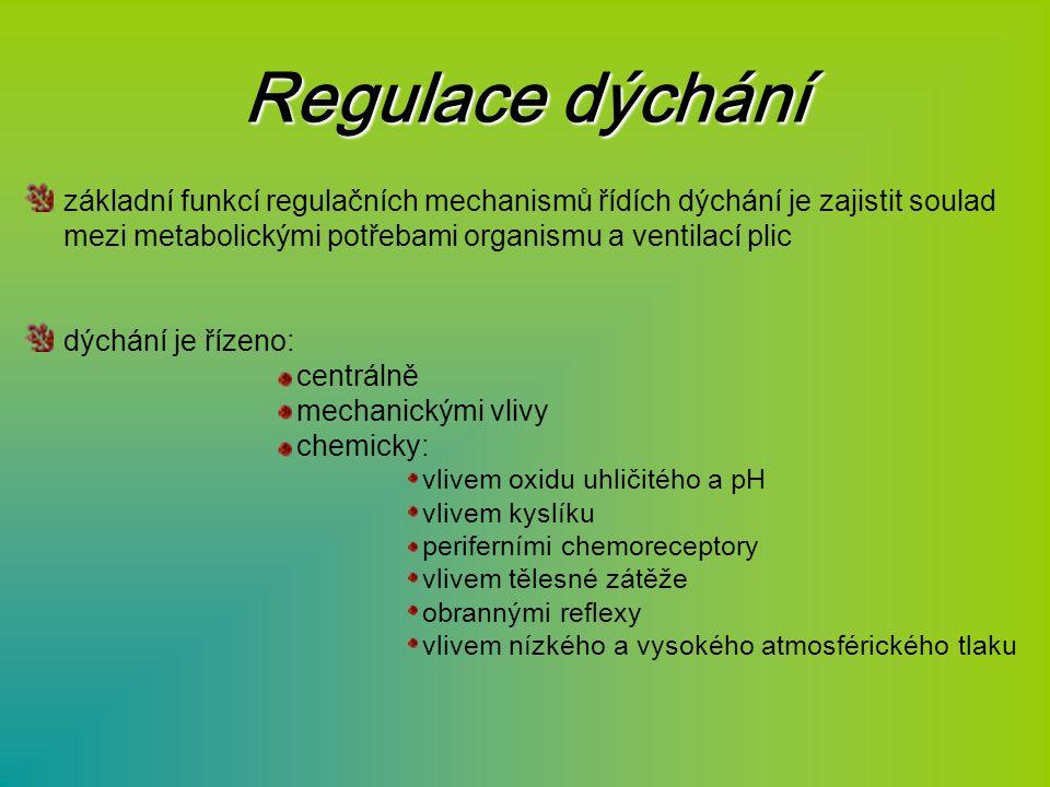 Regulace dýchání základní funkcí regulačních mechanismů řídích dýchání je zajistit soulad mezi metabolickými potřebami organismu a ventilací plic dých