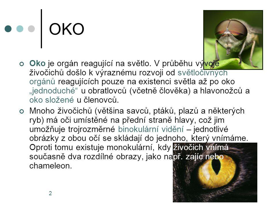 2 OKO Oko je orgán reagující na světlo. V průběhu vývoje živočichů došlo k výraznému rozvoji od světločivných orgánů reagujících pouze na existenci sv