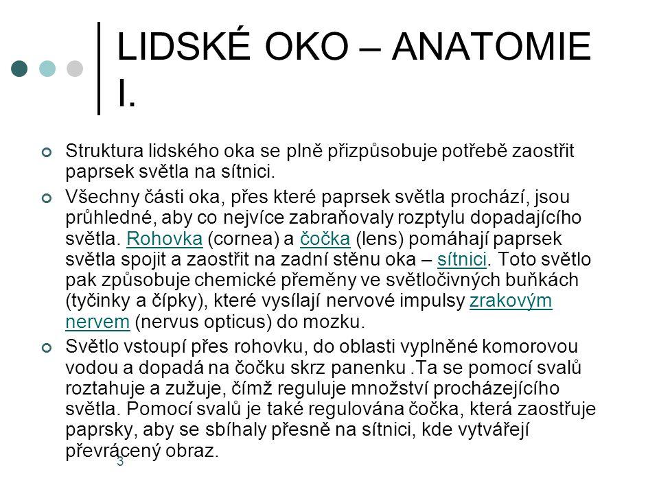 4 LIDSKÉ OKO – ANATOMIE II.Oční koule (bulbus oculi) je uložena v obličejové části lebky v očnici.