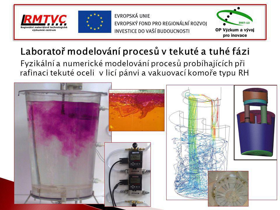 Laboratoř modelování procesů v tekuté a tuhé fázi Fyzikální a numerické modelování procesů probíhajících při rafinaci tekuté oceli v licí pánvi a vakuovací komoře typu RH