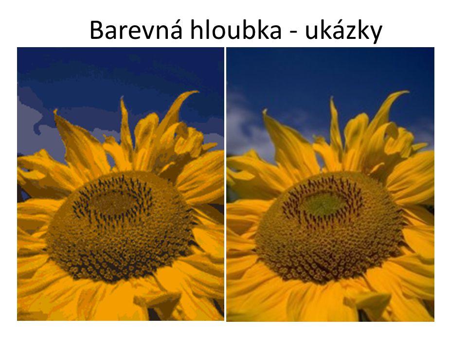 Kvantování Obrazová funkce rozdělí obraz na intervaly, jimž je přidělená jediná (zástupná) hodnota Hodnota kvantovaného signálu se mění skokem Dochází tedy k určité ztrátě informace Kvantizační chyba (šum) - plochy s náhlou změnou barev.