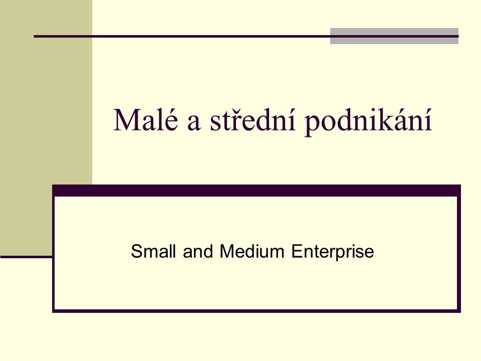 Ministerstvo průmyslu a obchodu Koncepce rozvoje malého a středního podnikání v letech 2007 — 2013.