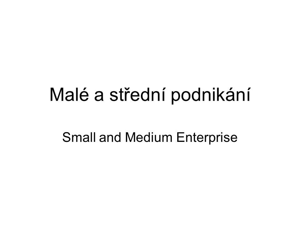 Malé a střední podnikání Small and Medium Enterprise