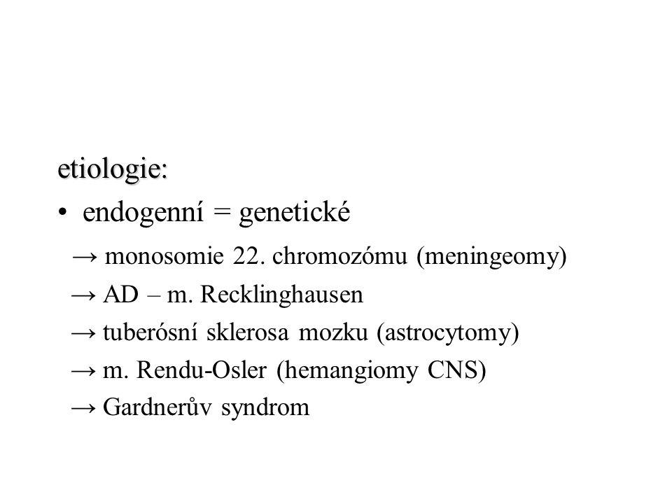 exogenní chemické (antracen, nitrosourea) viry (v experimentu polyoma virus, EBV, virus Rousova sarkomu) imunosuprese (po transplantacích, HIV, imunitní dysfunkce) ?.