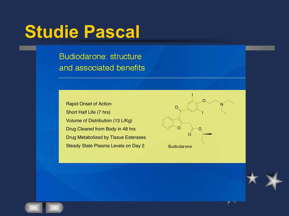 Studie Pascal