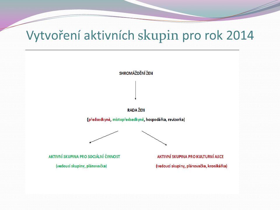 Vytvoření aktivních skupin pro rok 2014