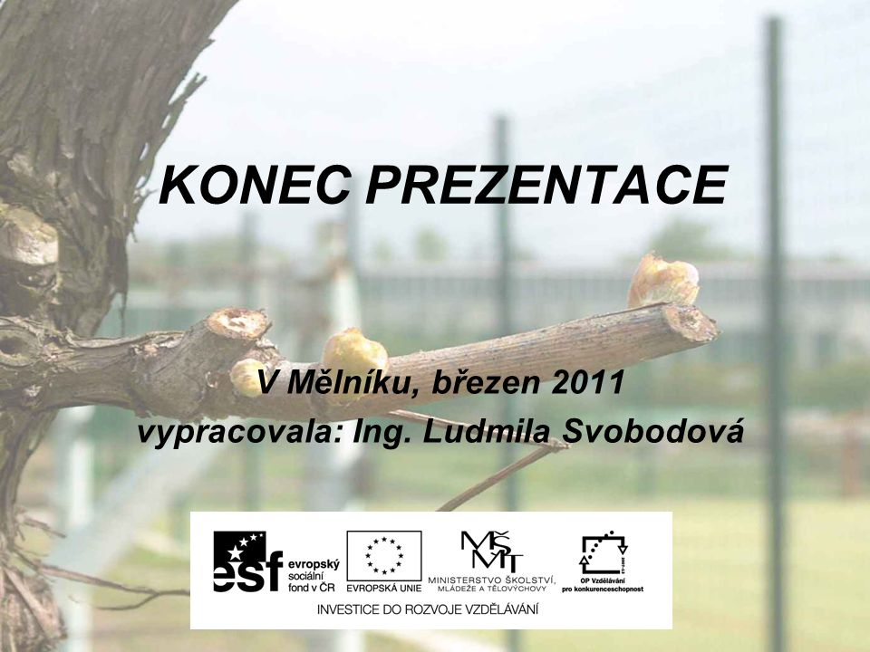 KONEC PREZENTACE V Mělníku, březen 2011 vypracovala: Ing. Ludmila Svobodová