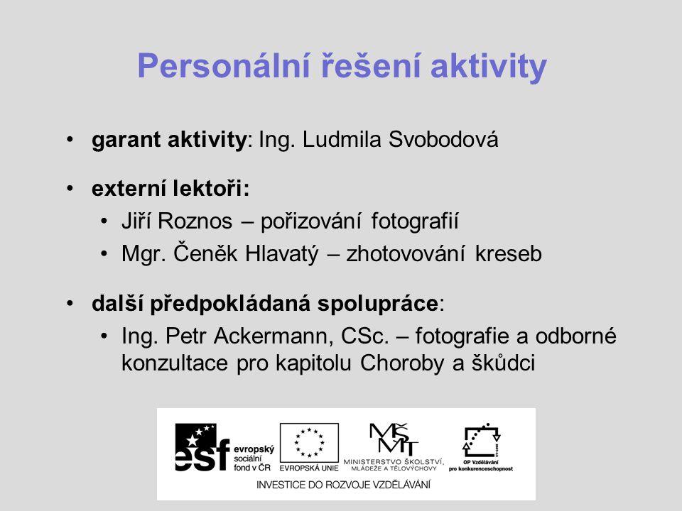 Personální řešení aktivity garant aktivity: Ing.