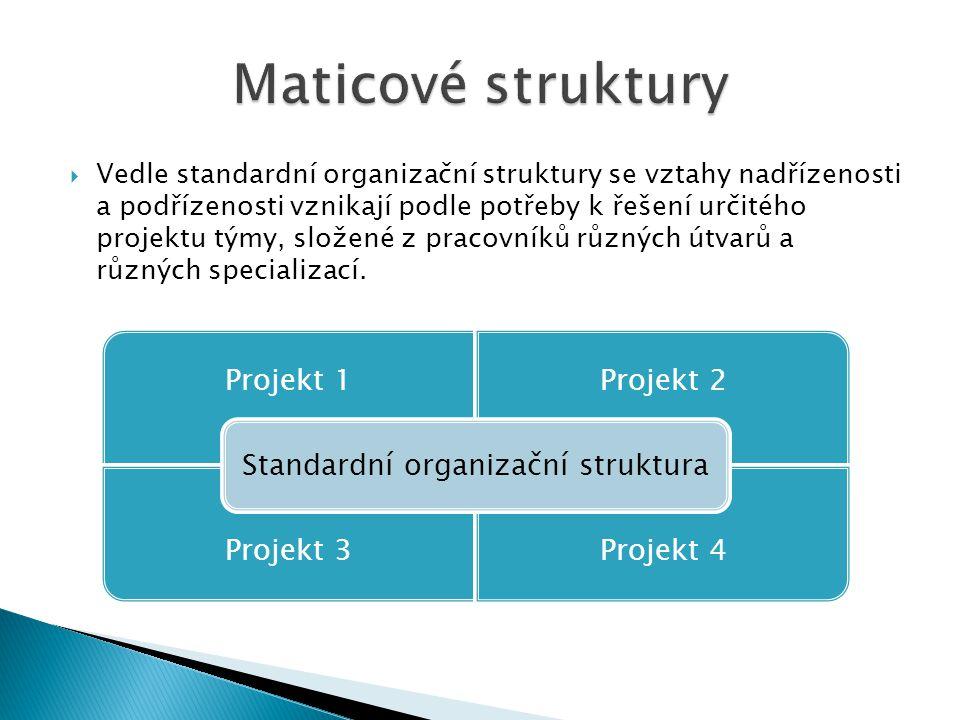  Vedle standardní organizační struktury se vztahy nadřízenosti a podřízenosti vznikají podle potřeby k řešení určitého projektu týmy, složené z praco