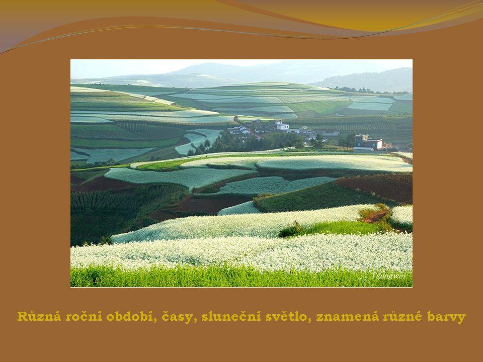 Mimořádně červenohnědá barva půdy je způsobena příměsí železa a dalších oxidovaných minerálů