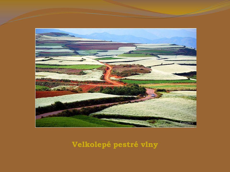 Dongchuan - Červený pozemek má nejatraktivnější barvy v horském údolí Yunnan