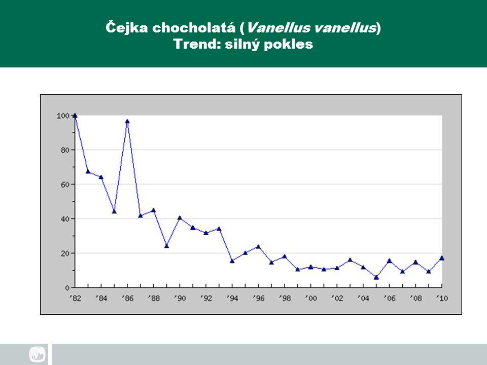 Čejka chocholatá (Vanellus vanellus) Trend: silný pokles