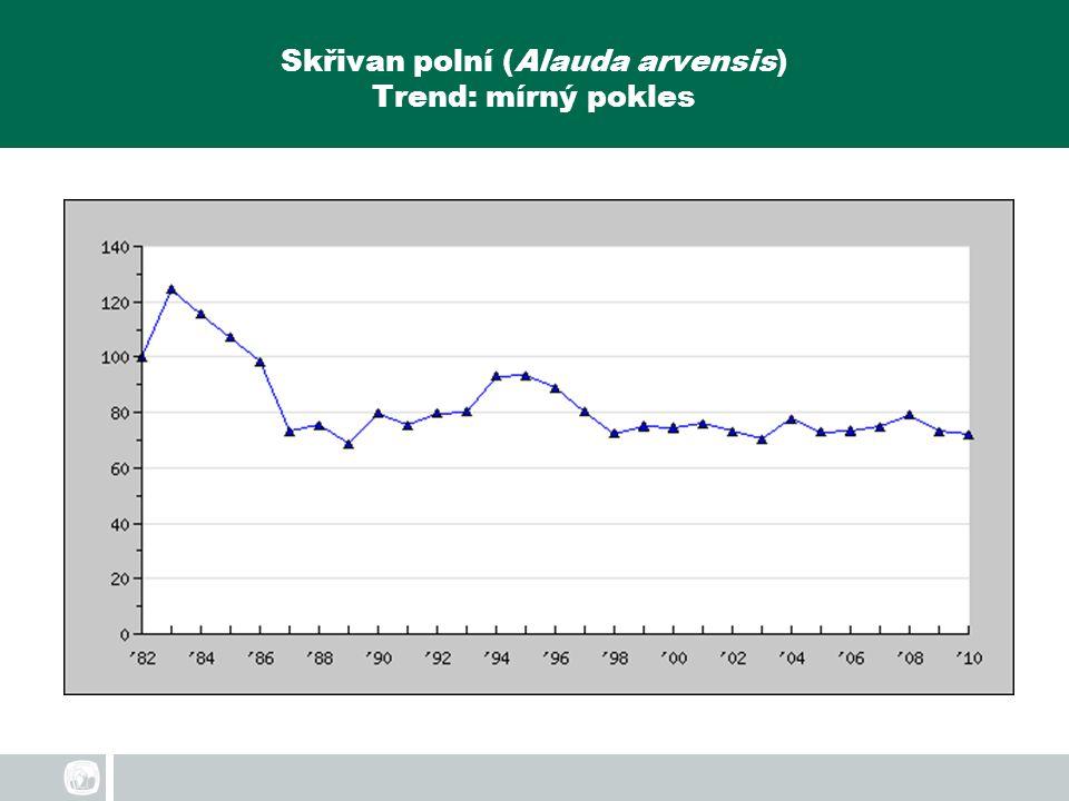 Skřivan polní (Alauda arvensis) Trend: mírný pokles
