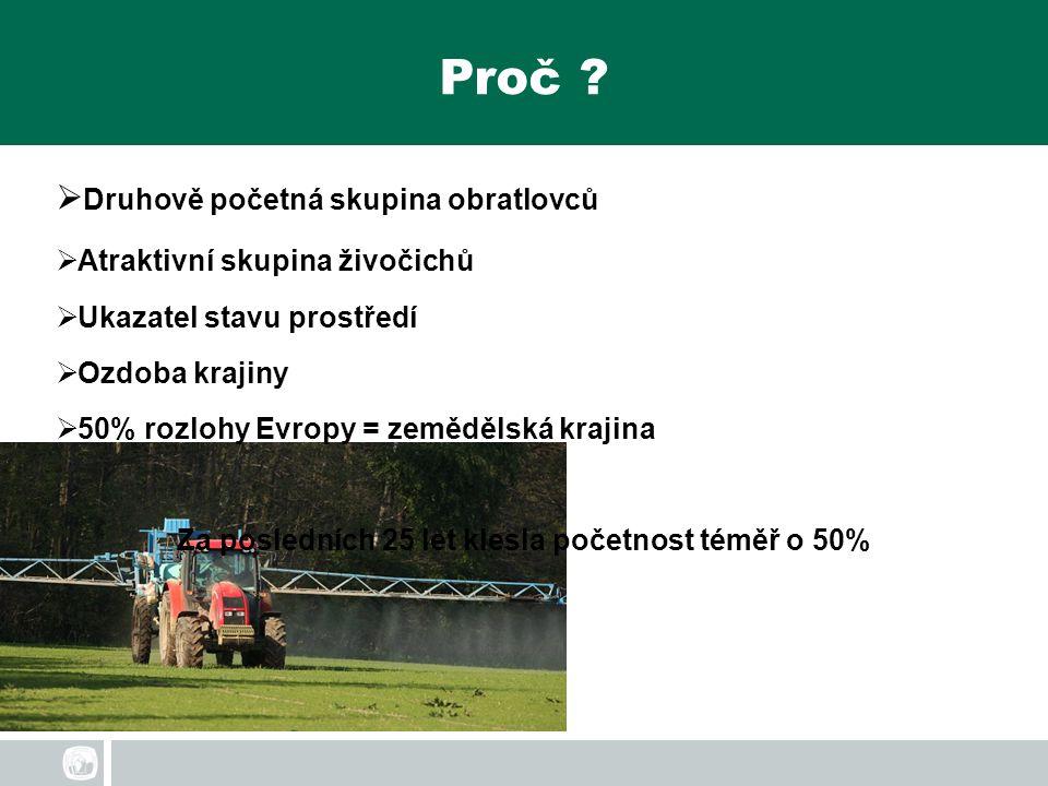 Proč ?  Druhově početná skupina obratlovců  Atraktivní skupina živočichů  Ukazatel stavu prostředí  Ozdoba krajiny  50% rozlohy Evropy = zeměděls