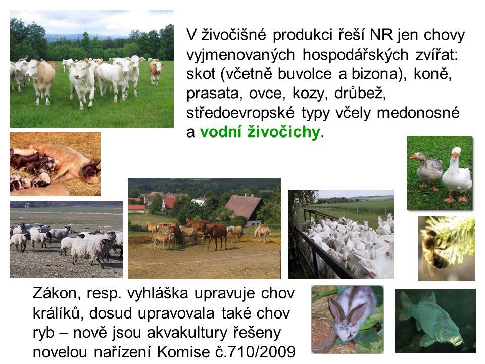 V živočišné produkci řeší NR jen chovy vyjmenovaných hospodářských zvířat: skot (včetně buvolce a bizona), koně, prasata, ovce, kozy, drůbež, středoev