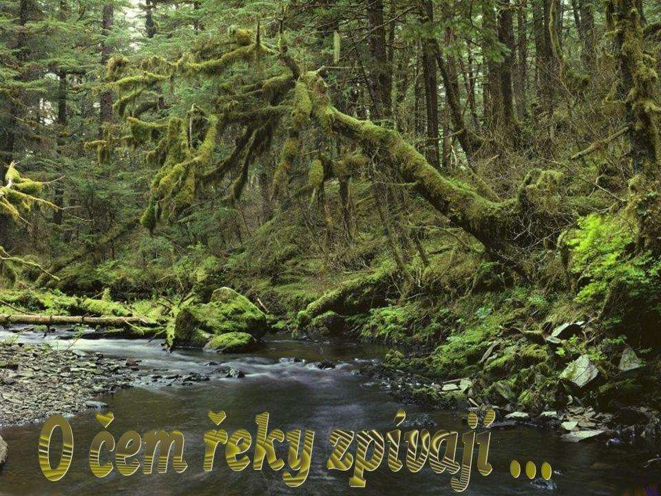 Při měsíční sonátě plyne věk, jak mokré milenčiny vlasy a neurvalá jsou koryta řek, kde voda s kameny pohrává si