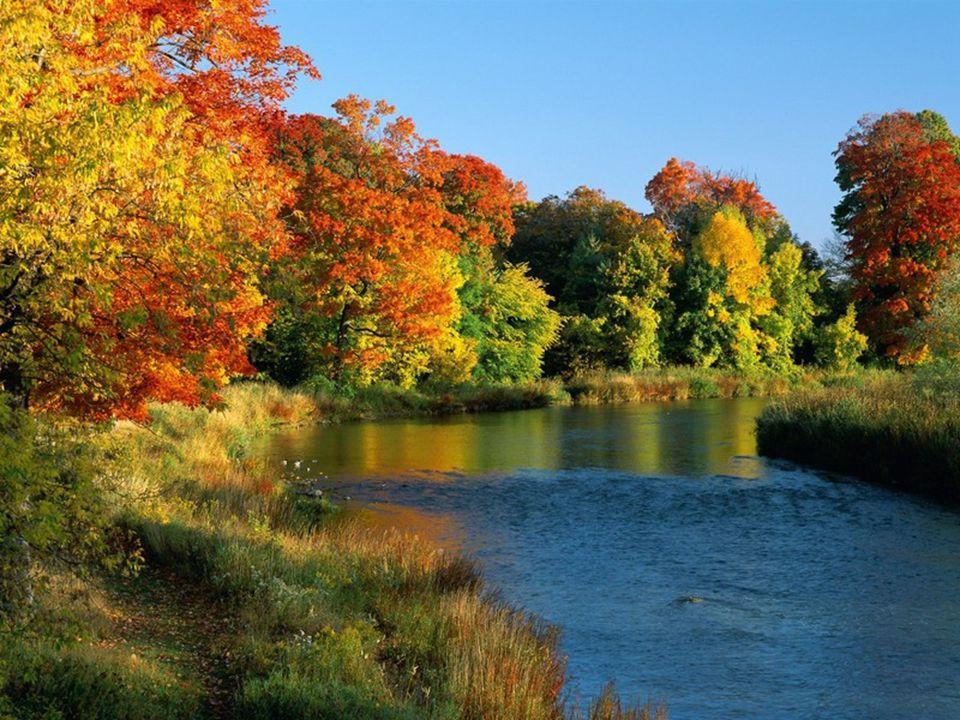 Slunce rozpustilo zlaté vlasy a rozdalo kraji rudé polibky, z nichž poslední patřily řece