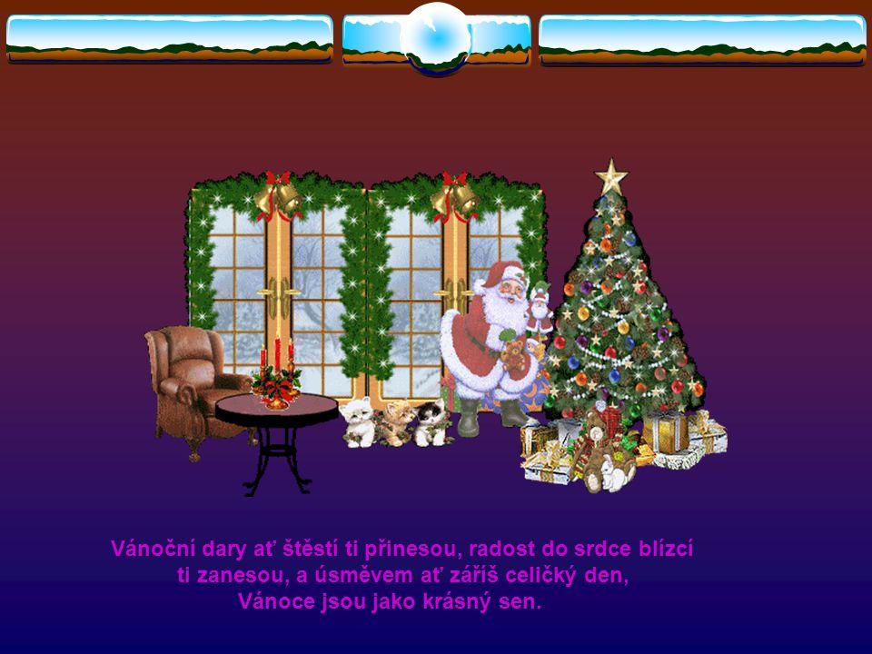 Nemusím se snažit dokazovat, že mám druhé ráda - jen proto, že jsou Vánoce. Nemusím se nutit ke štědrosti - jen proto, že jsou Vánoce. Ano, nemusím, a