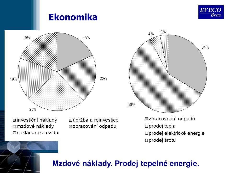 Ekonomika Mzdové náklady. Prodej tepelné energie.