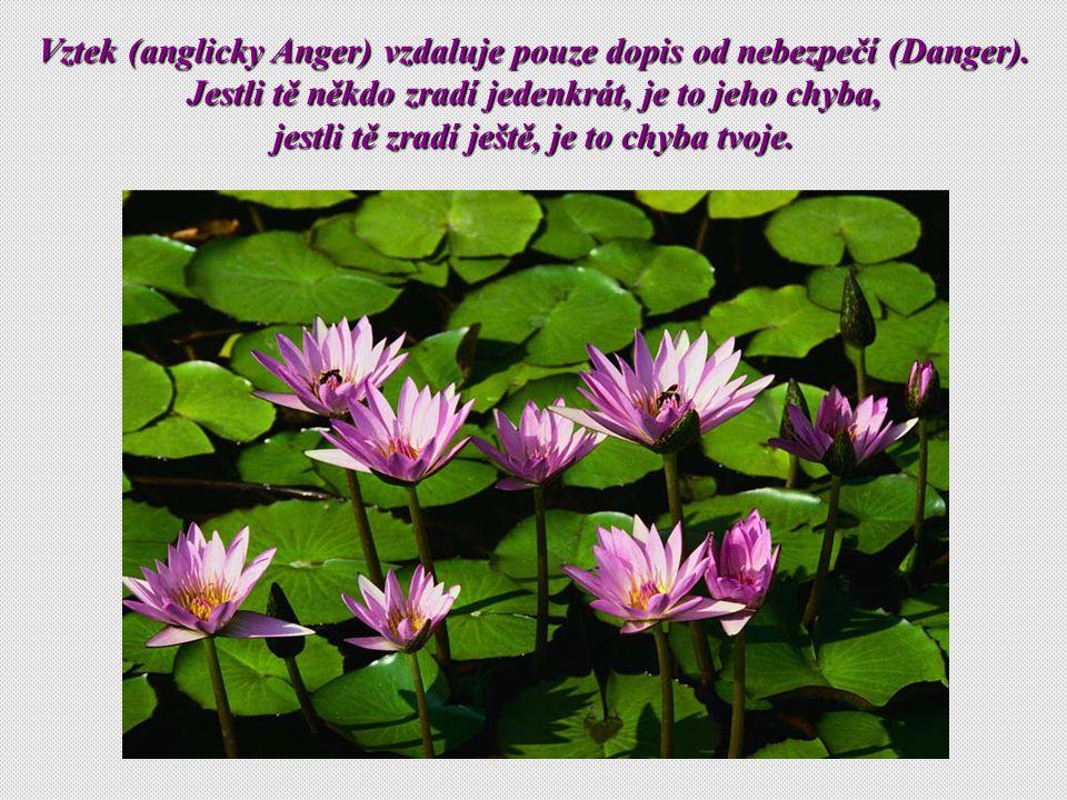 Vztek Vztek (anglicky (anglicky Anger) vzdaluje pouze dopis dopis od nebezpečí nebezpečí (Danger).